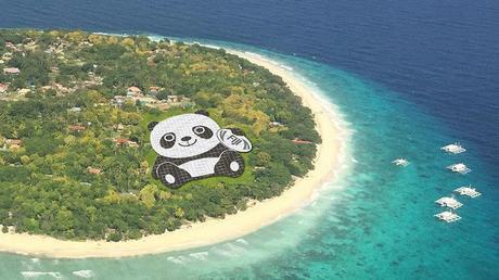 Une centrale solaire en forme de Panda en Chine