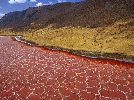Une sélection des plus beaux paysages à découvrir en Afrique