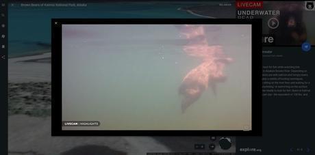 Google Earth propose maintenant des vidéos en direct