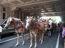 Immersion en pays Amish