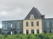 Verticale Château Pédesclaux 5ème Classé Pauillac.