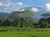 Bali découverte village Sibetan