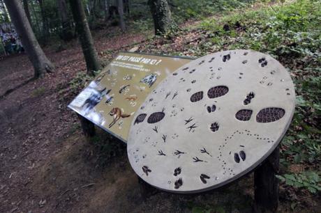 Un parcours faune locale au Parc zoologique de Mulhouse?