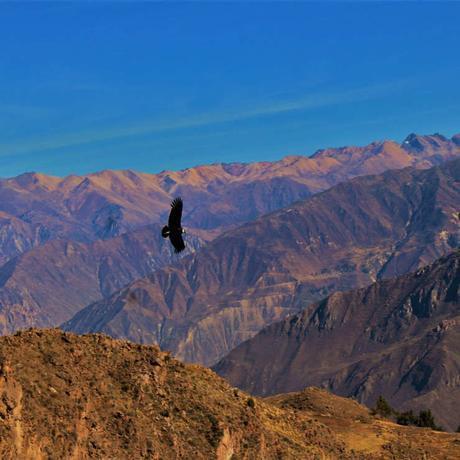 Voyage Pérou pas cher: Nos conseils
