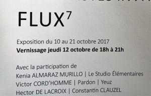 Galerie du CROUS PARIS        FLUX 7                    10/21 Octobre 2017