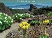 Tenerife Petit Futé