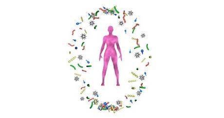 MICROBIOME et CANCER : Déséquilibres bactériens et risque de cancer du sein
