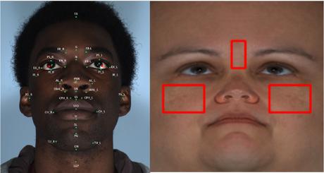 visage-adn-numerique