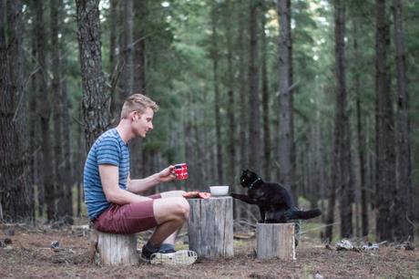 Tout quitter pour voyager avec son chat dans un camping-car