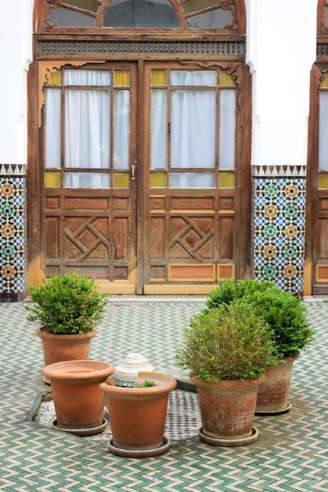 coin caché dans la capitale grande mosquée de paris