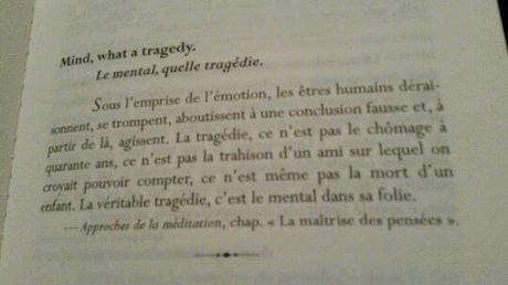 Tragédie mentale... et méditation