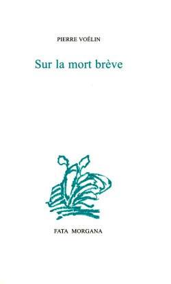 Pierre Voélin      Le nom des pluies