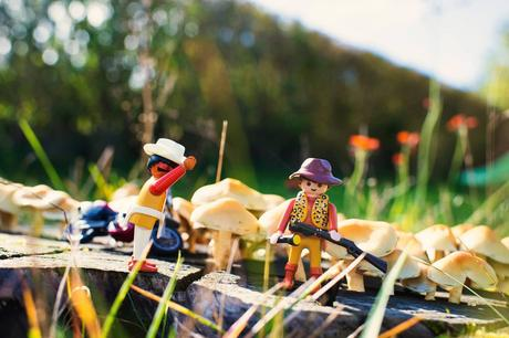 Playmobil Stories 3 - Champignons Géants