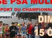 10Km Courses Mulhouse: MULHOUSE