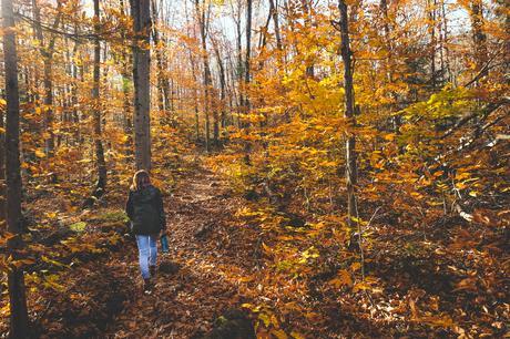 QUÉBEC | Découvrir Lanaudière en automne, vous y avez pensé?