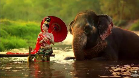 Musique Thaïlande en continue sur de superbes images (playlists)