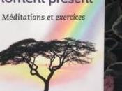 Mettre pratique pouvoir moment présent Eckhart Tolle, livre pour être plus sage