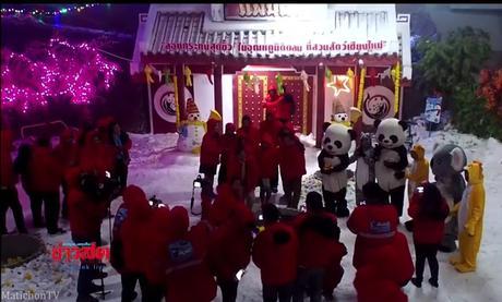 Chiang mai, un Loy Krathong de rêve glacé pour grand panda (vidéo)