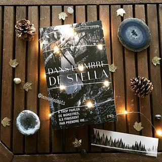 Dans l'ombre de Stella - Alexandra Sirowy
