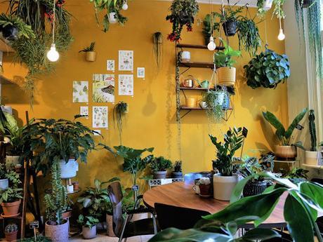 Amsterdam / Atelier rue verte / Wildernis 3 /