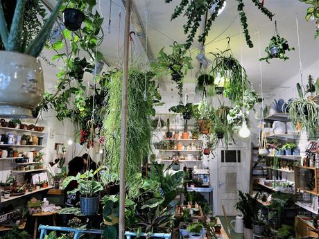 Amsterdam / Atelier rue verte / Wildernis 4 /