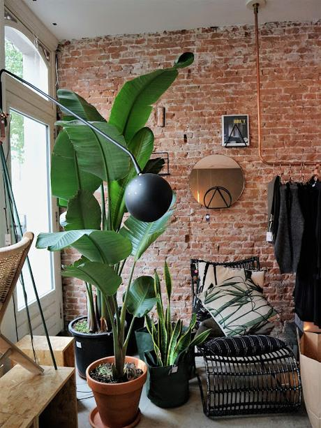Amsterdam / Atelier rue verte / Felice 4 /