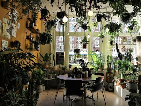 Amsterdam / Atelier rue verte / Wildernis 7 /