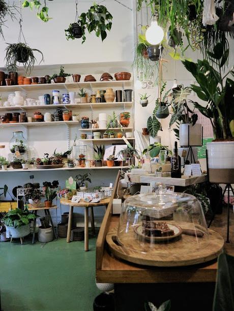 Amsterdam / Atelier rue verte / Wildernis 2 /