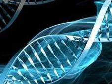 Acouphènes, a-t-il prédisposition génétique? Philippe Barraqué