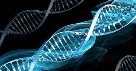 Acouphènes, y a-t-il une prédisposition génétique? - Philippe Barraqué
