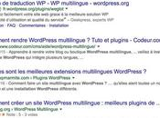 Comment mettre place Rich Snippet WordPress