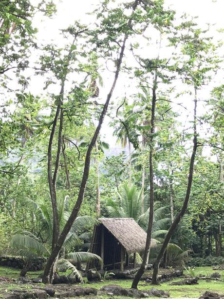 ♥ ♥ ♥ ♥ ♥     Nuku Hiva   ♥ ♥ ♥ ♥ #    - Les îles Marquises         -    La Polynésie Française  #  -  DREAM & FOOD TRAVEL GUIDE