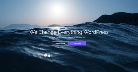 Plus de 30 meilleurs thèmes WordPress gratuits