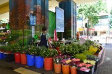 Au paradis des fleurs et du jade à Taipei  !!
