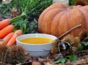 Velouté d'automne, potiron-carotte-châtaigne