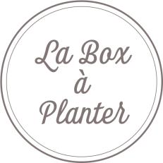 Box à Planter Mamijote