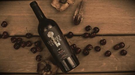 Tout savoir sur la dégustation du vin