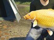 Nouveau pour Euro Fishing, d'Or