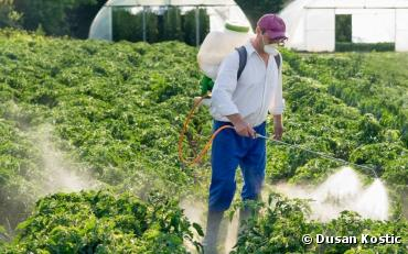Sulfoxaflor : la justice suspend la vente de deux insecticides