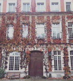 L'Actu Food et franco-allemande en novembre