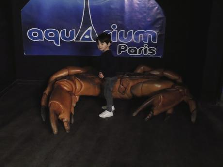 aquarium-paris-6
