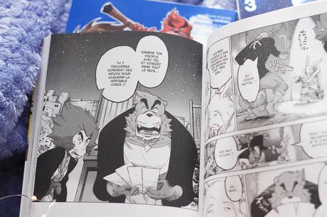 [ Manga ] Les coffrets à glisser sous le sapin !