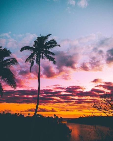 Les Fidji ; 333 îles d'une beauté naturelle et leader en écotourisme