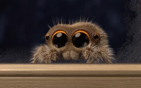 Lucas, la petite araignée est de retour !