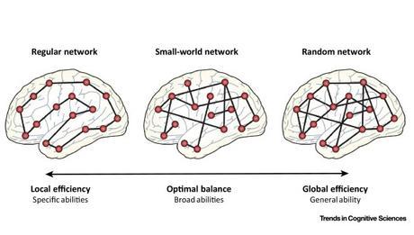 INTELLIGENCE : Et si la flexibilité était la clé ?
