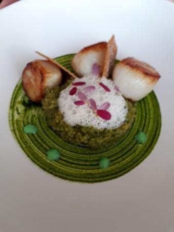 Saint-Jacques, quinoa © Gourmets&co