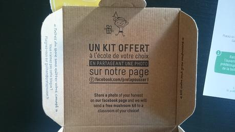 [Test] Kit prêt à pousser – Pleurotes – Mon avis !