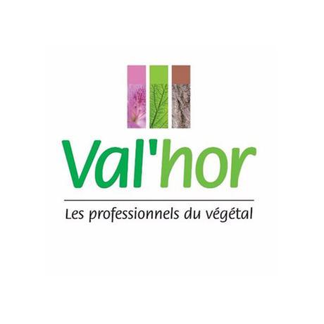 VAL'HOR, l'Interprofession de l'horticulture, de la fleuristerie et du paysage vous donne rendez-vous du 5 au 7 décembre prochains à Lyon dans le cadre du salon Paysalia 2017