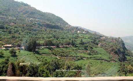 Le Liban en famille, quelle drôle d'idée !