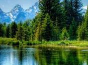 Notre sélection musiques relaxante: Nature
